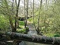 River Grom - geograph.org.uk - 807436.jpg