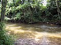 River Rye near Rievaulx - geograph.org.uk - 575968.jpg