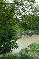 River Saraswati - Sankrail - Howrah - 2013-08-11 1327.JPG
