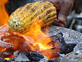 Roasting of Maize - stage 3.JPG
