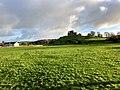 Rock of Cashel, Caiseal, Éire - 45671317175.jpg