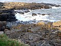 Rocky shore south of Craster - geograph.org.uk - 1188486.jpg