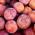 Round red plums 2017 A2.jpg