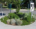 Roundabout landscaping.jpg