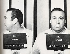 Roy DeMeo - FBI mugshot, July 14, 1981
