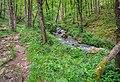 Ruisseau des Palanges (9).jpg