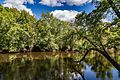 Rum River in Princeton, Minnesota (29572111696).jpg