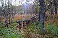 Sørfjordens første kirkegård 02.jpg