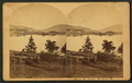 S.W. Harbor, Mt. Desert, Me, by B. Bradley.png
