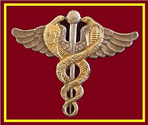 South African Military Health Service - Image: SANDF SAMHS Medical Doctor chest insignia