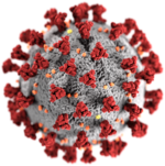 Illustration du coronavirus du CDC