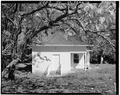 SOUTH ELEVATION, COTTAGE. - Gold Ridge Farm, 7777 Bodega Avenue, Sebastopol, Sonoma County, CA HABS CAL,49-SEBA,1-16.tif