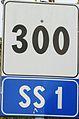 SS 1 300.JPG