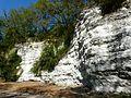 Saint-Astier (Dordogne) falaise calcaire.jpg