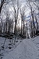 Sainte-Julie entrance to the Mont-Saint-Bruno National Park, in Winter.jpg