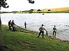 Salmon Netting below Paxton House - geograph.org.uk - 216572.jpg