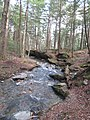 Savoy Mountain State Forest.jpg