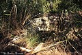 Scarico acque reflue siti in pineta.jpg