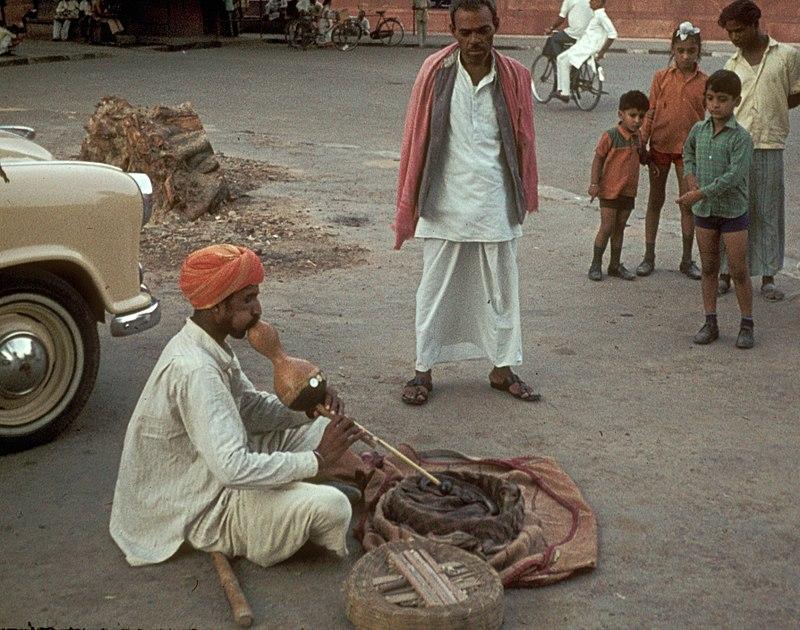 蛇使い:Snake Charmer:سپیرا (saperaa)