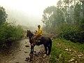 Scouting by horseback (7343254186).jpg