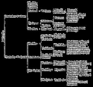 Daitō-ryū Aiki-jūjutsu - Family tree of the Seiwa Genji.