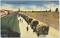 Selectees arriving at Camp Claiborne, La. (8185136559).jpg