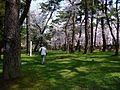Senshu Park - panoramio.jpg