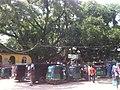 Shah Paran Dhargah.jpg