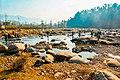 Shankiari.jpg