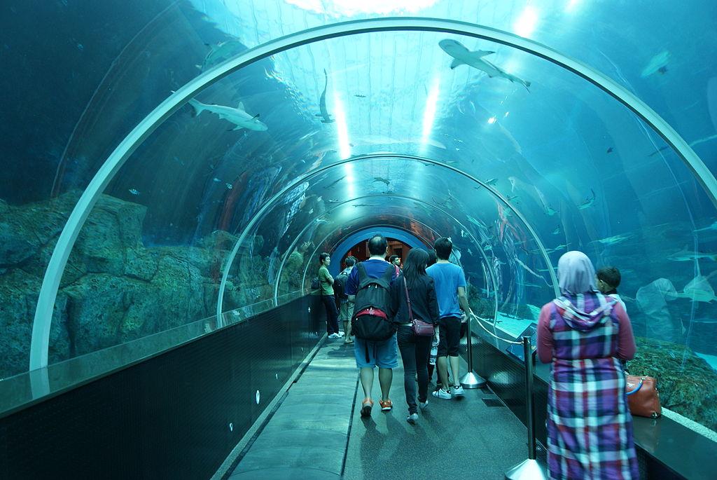 Image Result For Dallas Aquarium Location
