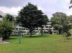 Buona Vista Battery - Image: Singapore Pine Grove Buona Vista Battery Num Two Gun Site