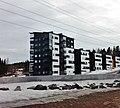 Sippulantie 4, Ristikivi, Jyväskylä.jpg