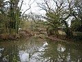 Slade's Bridge, Basingstoke Canal - geograph.org.uk - 105979.jpg