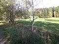 Slatiny - panoramio (14).jpg