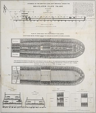 Triangular trade - Diagram illustrating the stowage of African slaves on a British slave ship.