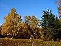 Slovakia autumn 23.JPG