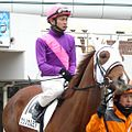 So-Nihonyanagi20100417.jpg