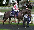 Sole Power crop.jpg
