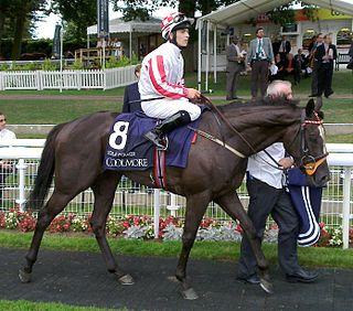 Sole Power British-bred Thoroughbred racehorse