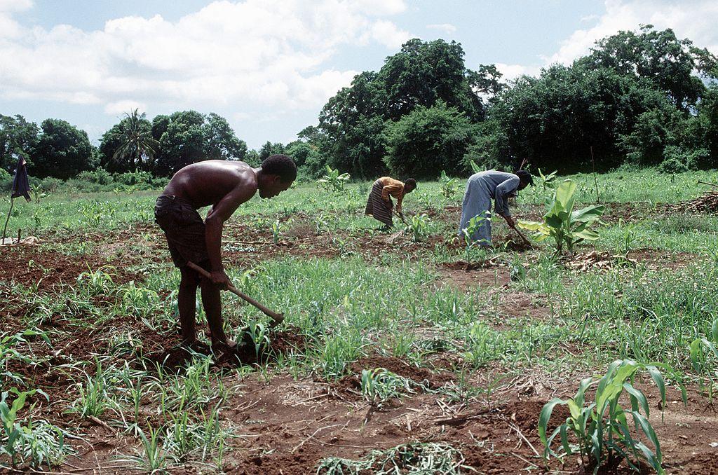 history of community development in nigeria pdf