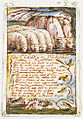 Songs of Innocence and of Experience, copy Y, 1825 (Metropolitan Museum of Art) object 32 The Clod & the Pebble.jpg