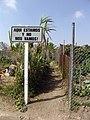 South Central Farm 50.jpg