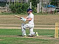 Southwater CC v. Chichester Priory Park CC at Southwater, West Sussex, England 036.jpg