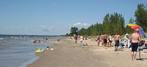 Photograph showing dozens of people along a beach who are swimming, sunbathing, and playing.