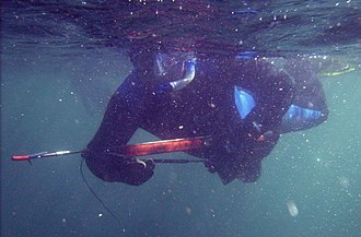 Speargun - Speargun in use by a diver