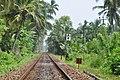 Sri Lanka, Bentota, railway.JPG
