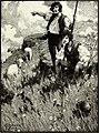 St. Nicholas (serial) (1915) (14782240004).jpg