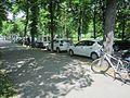 Stadtpark-Graz Fehlende-Sperrfläche-neben-Absenkung.jpg