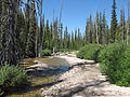 Stanley Lake Creek Sawtooth NRA.JPG