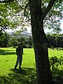 Starr-091104-0799-Albizia zygia-trunk with Forest-Kahanu Gardens NTBG Kaeleku Hana-Maui (24619994889).jpg
